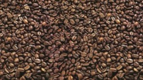 D 3020 PE Кафе